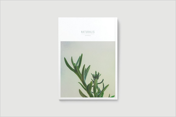 Design Online Magazine Outlook