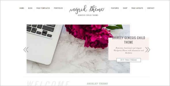 Download E-Commerce WordPress Theme