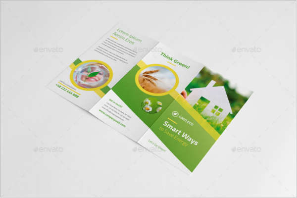 Eco-Friendly Green Brochures Design