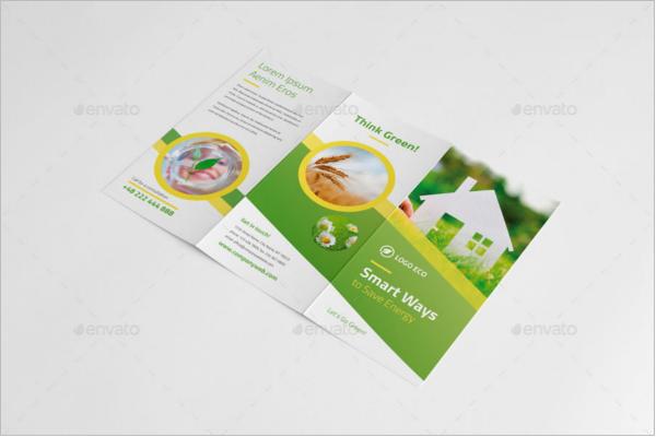 Eco-Friendly Green Brochures Design
