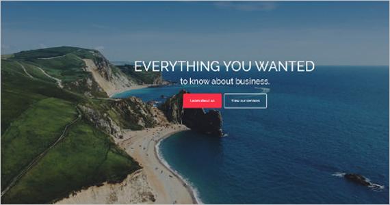 Elagant Free WordPress Theme