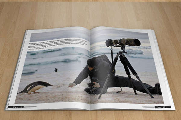 Exciting Mammal Photography Design