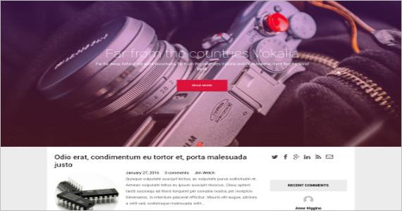 Free Professional WordPress Template