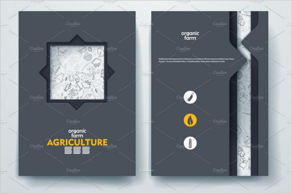Graphic Scrap Book Brochure Ideas