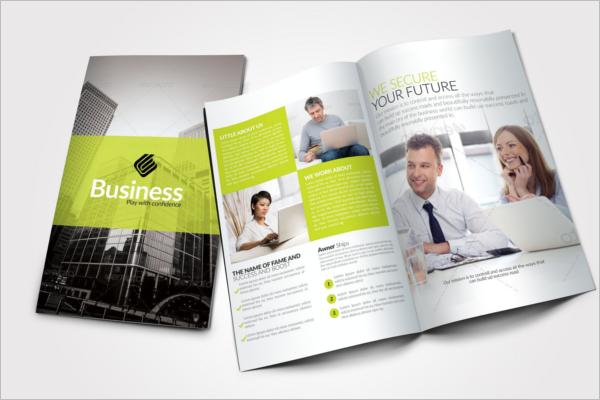 High-Quality Design Business Brochures