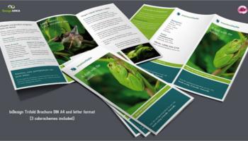 Green Brochure PSD Templates