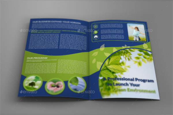 Leaf Environmental Brochure Design