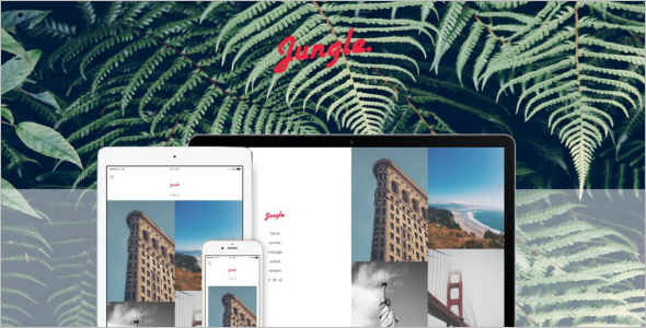 Minimalistic Photography Tumblr Theme