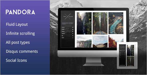 Modern Photography Tumblr Theme
