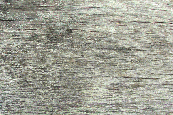 Old Grey Wood Surface Texture