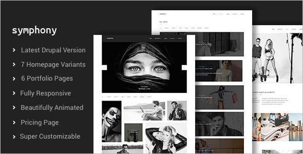 Photography Design Studio Drupal Themes