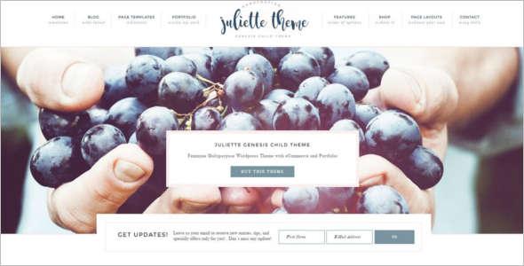 Portfolio E-Commerce WordPress Theme