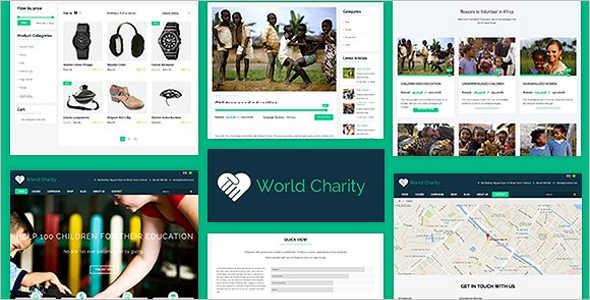 Professional Fundraising WordPress Theme