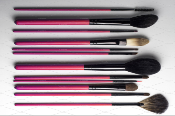 Professional Isolated Glamour Bristles