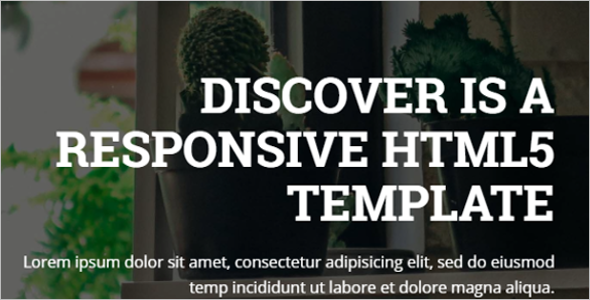 Responsive Discover Web Slider Template