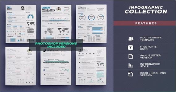 Resume Bundle Infographic Design Template