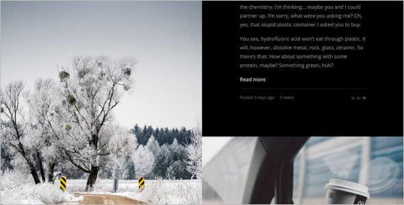 Retina Photography Tumblr Theme