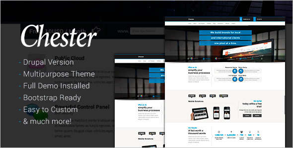 Software Technology Drupal Template