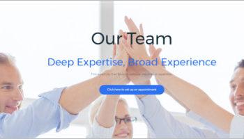 IT WordPress Themes