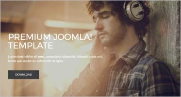 Professional Joomla Templates