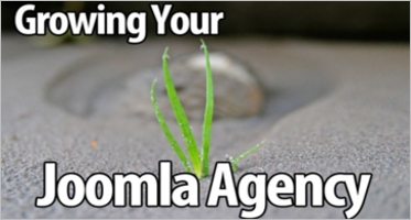 Agency Joomla Templates
