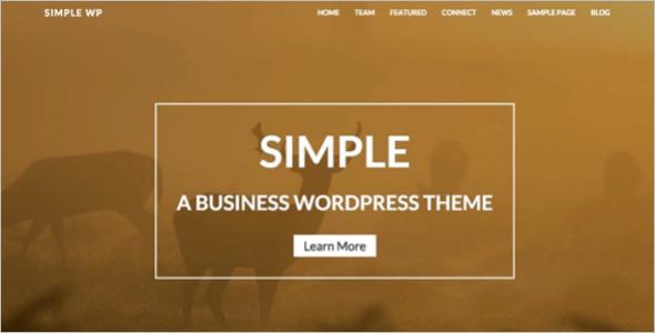 Effective WordPress Template