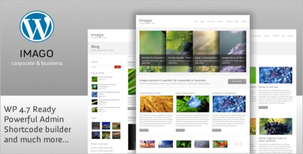 Premium WordPress Google Slider Theme