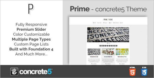 Professional Concrete5 Template
