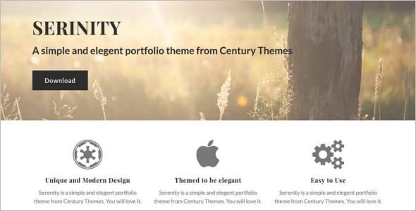 Serenity wordPress template