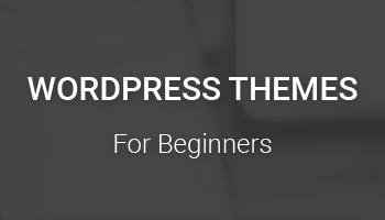 Cheap & Best WordPress Themes
