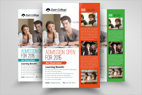Best Education Flyer Template