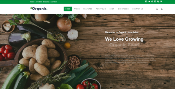 Ecology & Environmental Joomla Template
