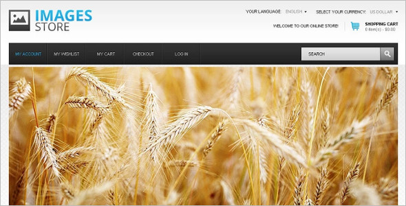 High Quality Photo Magento Theme