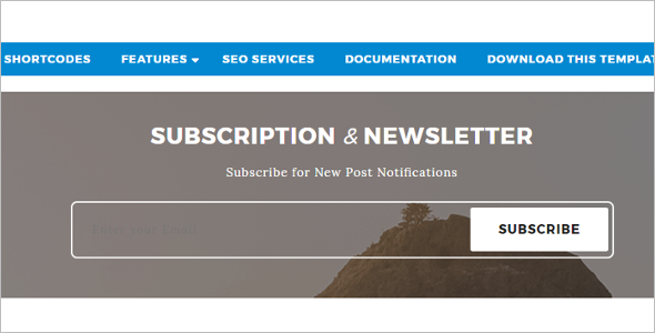 Newletter Free Blog Template