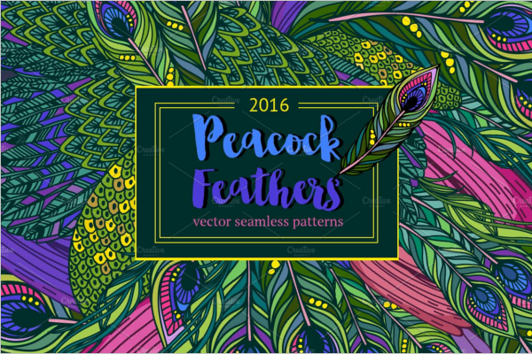 Peacock Graphic Feathers