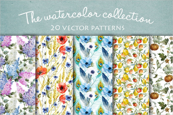 Peacock Vector Patterns