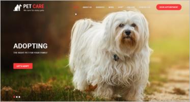 Pet Shop WooCommerce Themes
