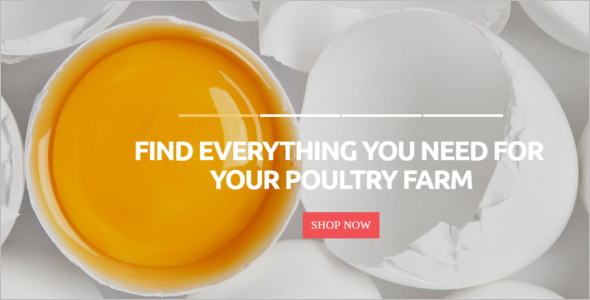 Poultry Farm Magento Template