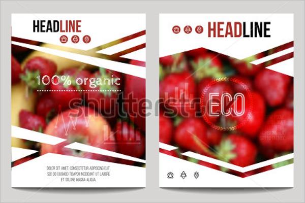 Premium Product Flyer Design