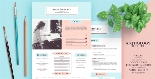 Professional Sketch PSD Template