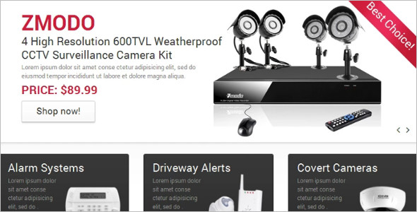 Security system Magento Template