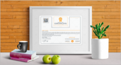 30+ Sample Training Certificate Templates