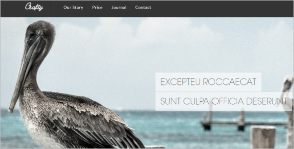 jQuery HTML Website Template