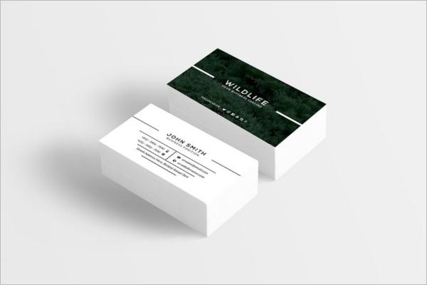 Adventure Business Card Template