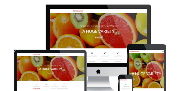 Agriculture Blog WordPress Theme