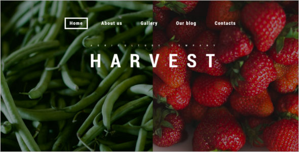 Agriculture Harvest WordPress Theme