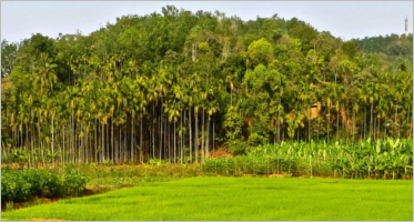 Agriculture PrestaShop Themes