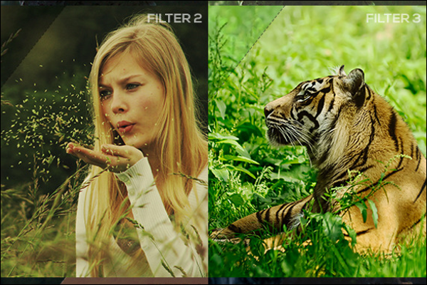 Best Photo Filter Template