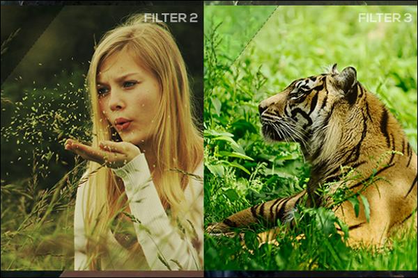 Best Photo Filter Template