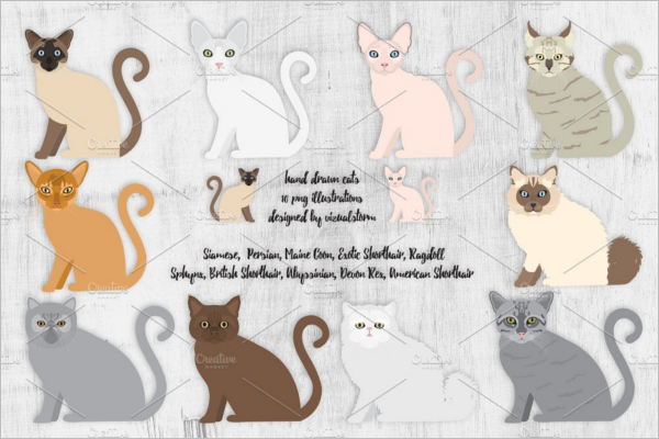Cats Birthday Party Design
